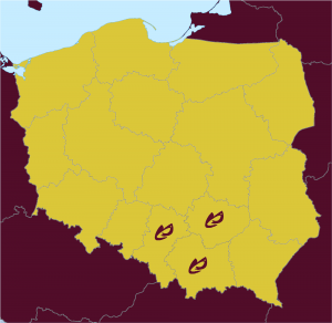 2000px-Poland_location_map_white11